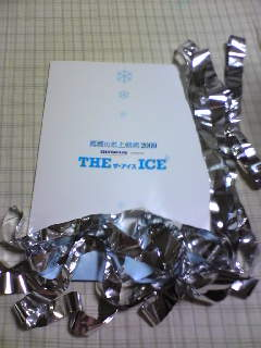 THE ICE 2009 パンフレット